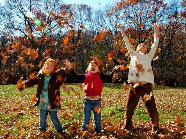 Що робити восени: 25 розваг для всієї родини