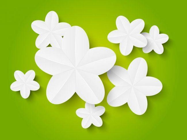 Квіти з паперу - незвичайна прикраса і оригінальний подарунок