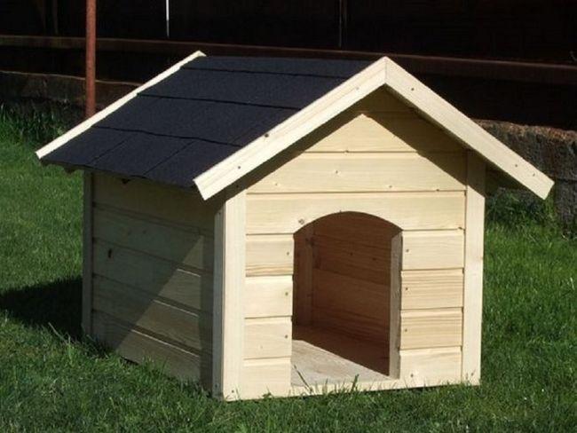 Будинок для вірного друга: робимо собачу будку своїми руками