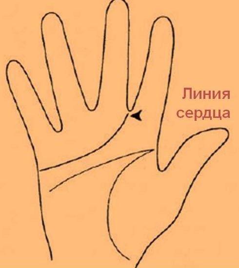 Ворожіння по лінії серця на руці