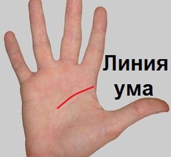 Ворожіння по лінії розуму (голови) на руці