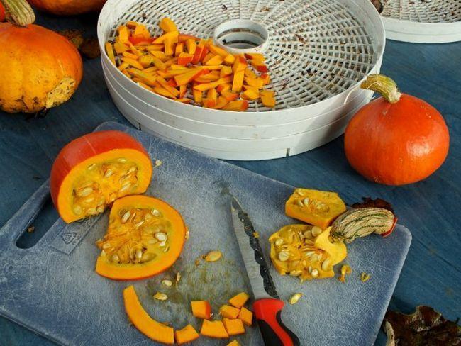 Яку електросушарку вибрати для фруктів, овочів і грибів?