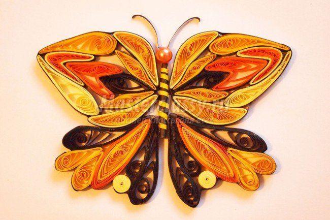Квіллінг метелик: майстер клас для початківців рукодільниць з фото і відео порадами