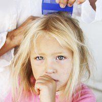 Звідки беруться воші у людини, симптоми їх появи і лікування