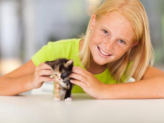 Дитина і кошеня - чи варто погоджуватися на вихованця?