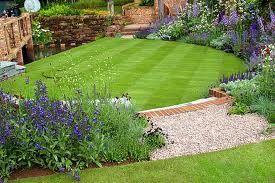 Рулонний газон і його використання
